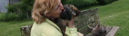 Gos d`Atura Blümchen: ein Hund auf Krautsand